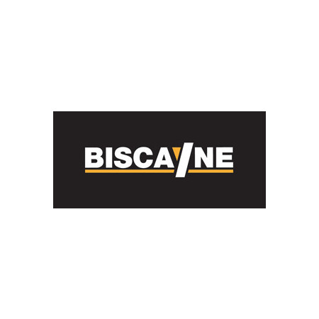 BISCAYNE SERVICIOS S.A. (LONKING)