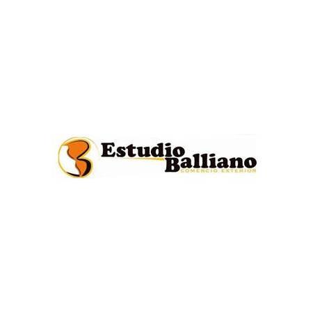 ESTUDIO ADUANERO BALLIANO