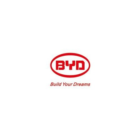 BYD Argentina